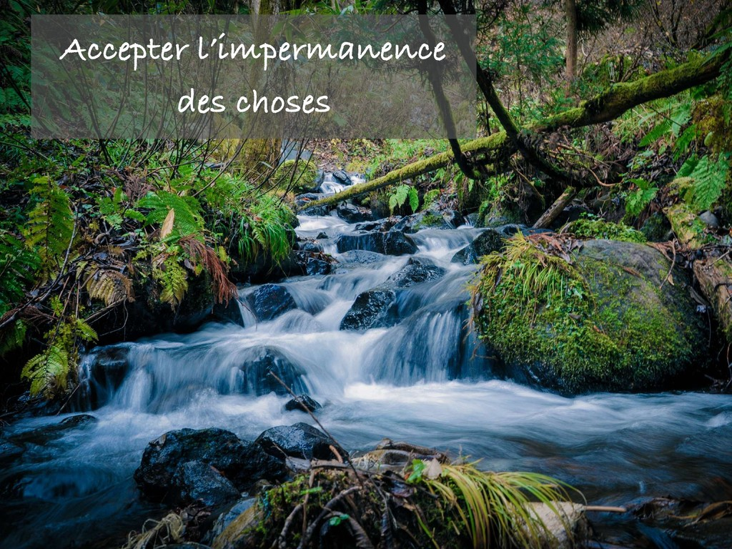 Accepter l'impermanence des choses