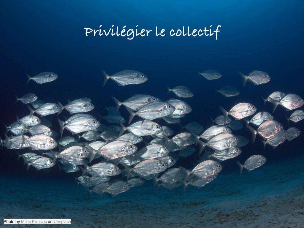 Privilégier le collectif Photo by Milos Prelevi...
