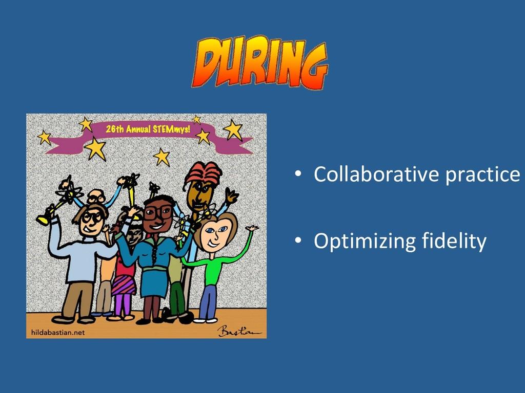 • Collaborative practice • Optimizing fidelity