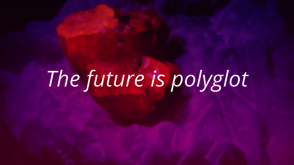 The future is polyglot