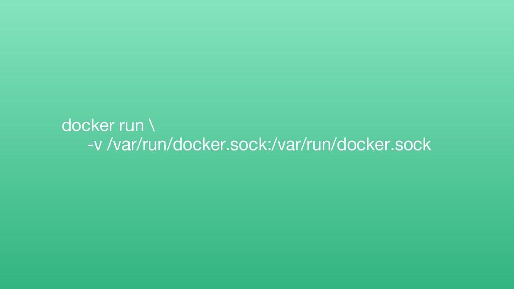 docker run \ -v /var/run/docker.sock:/var/run/d...
