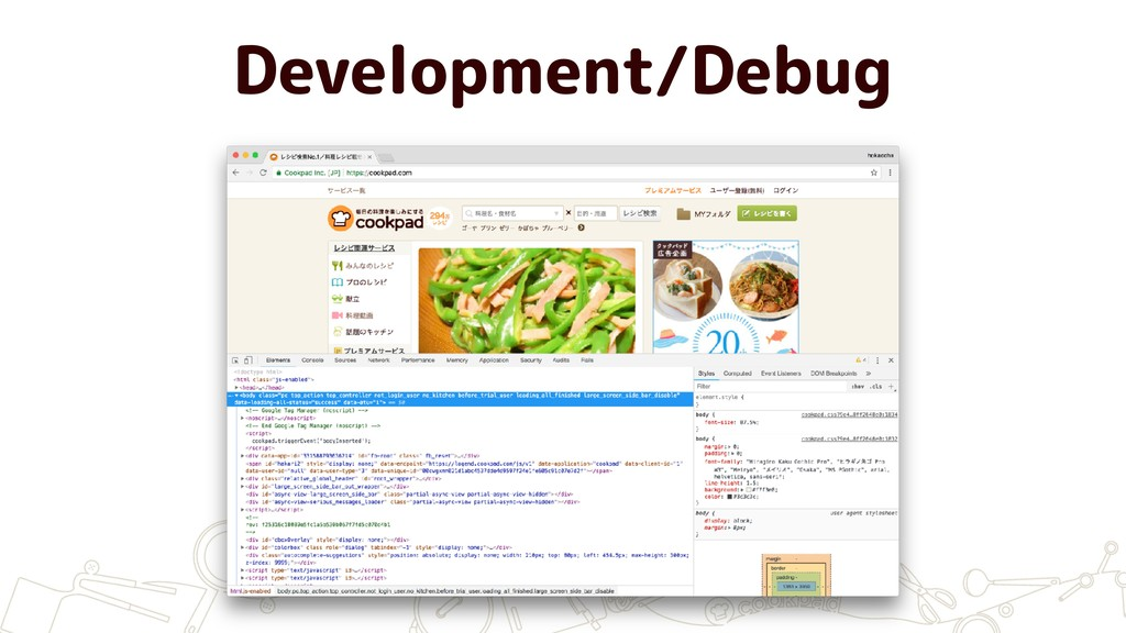 Development/Debug