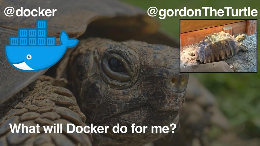What will Docker do for me? @gordonTheTurtle @d...