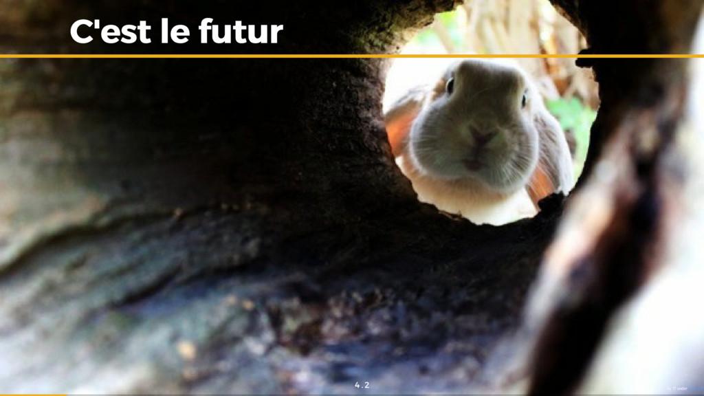 C'est le futur C'est le futur by ?? under CC0 1...
