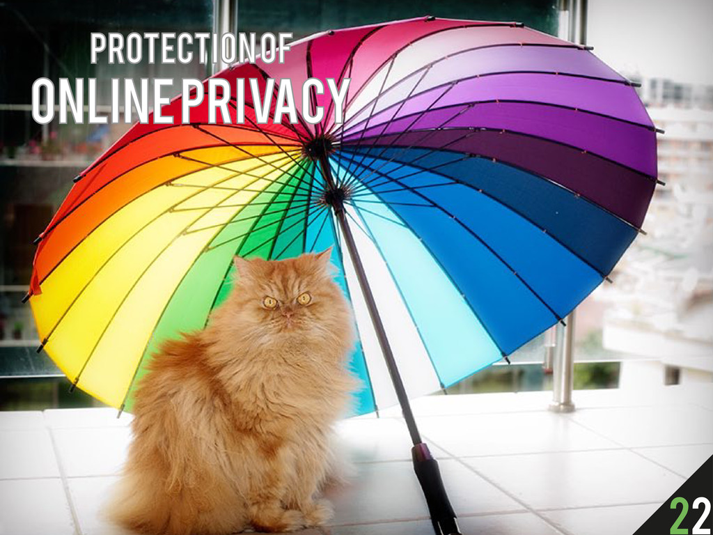 Protection of online privacy 22