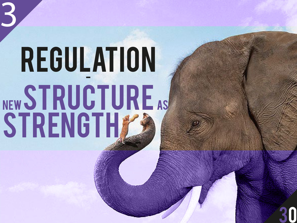 REGULATION - NEW STRUCTURE AS STRENGTH 3 30