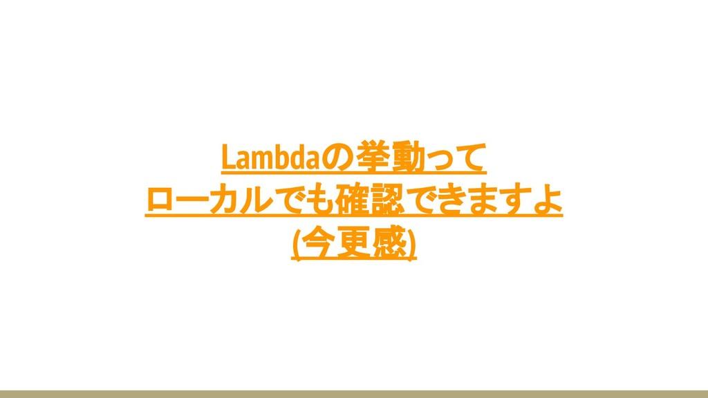 Lambdaの挙動って ローカルでも確認できますよ (今更感)