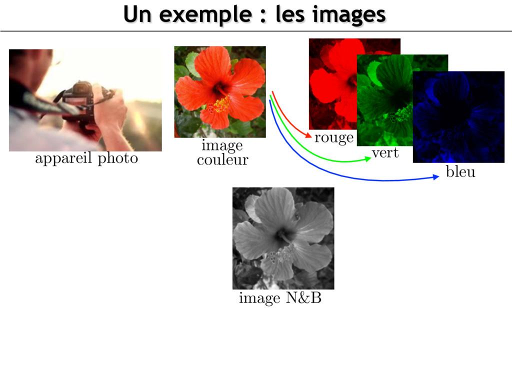 image N&B Un exemple : les images appareil phot...