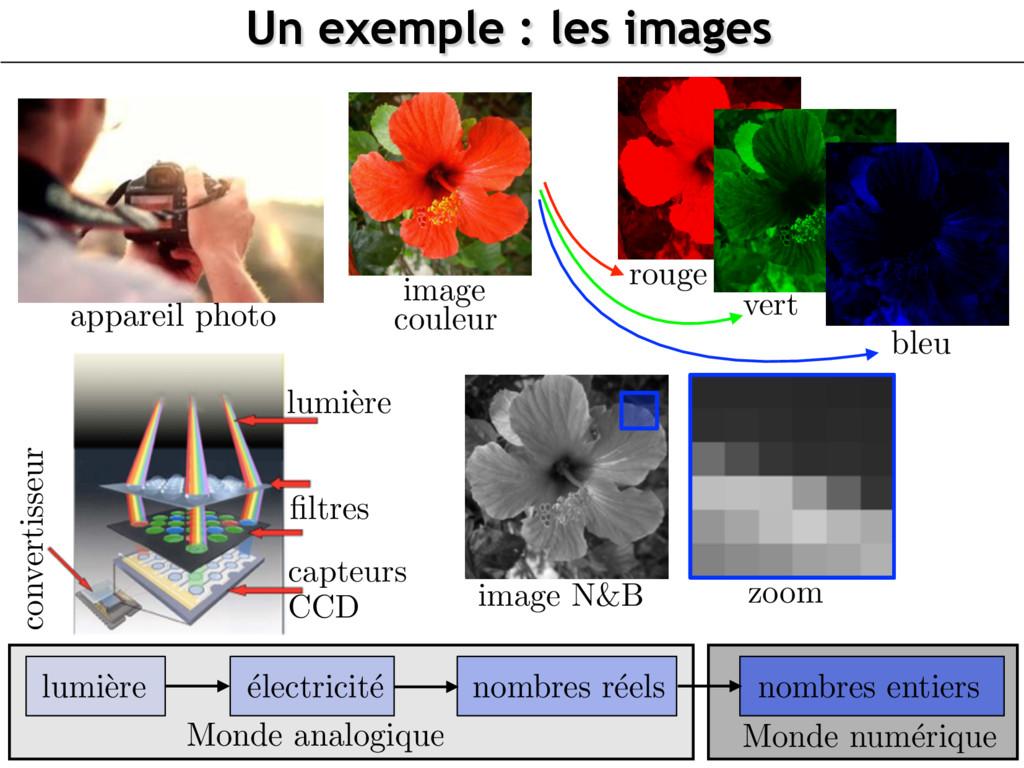image N&B Un exemple : les images zoom lumi` er...