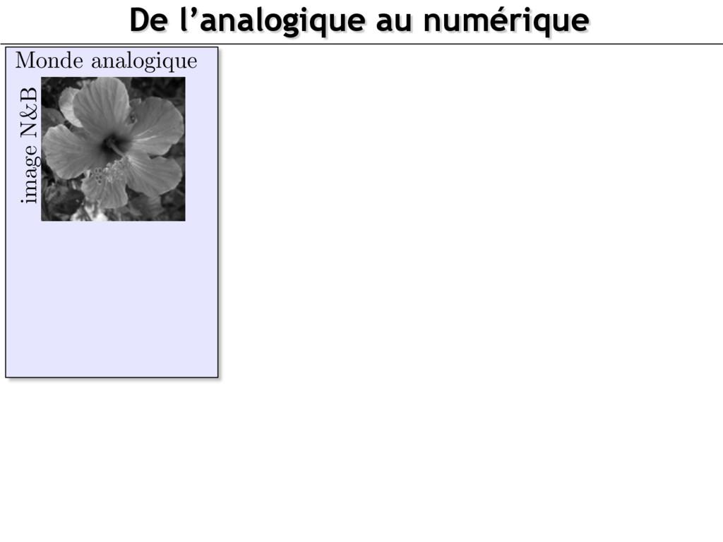 image N&B Monde analogique De l'analogique au n...