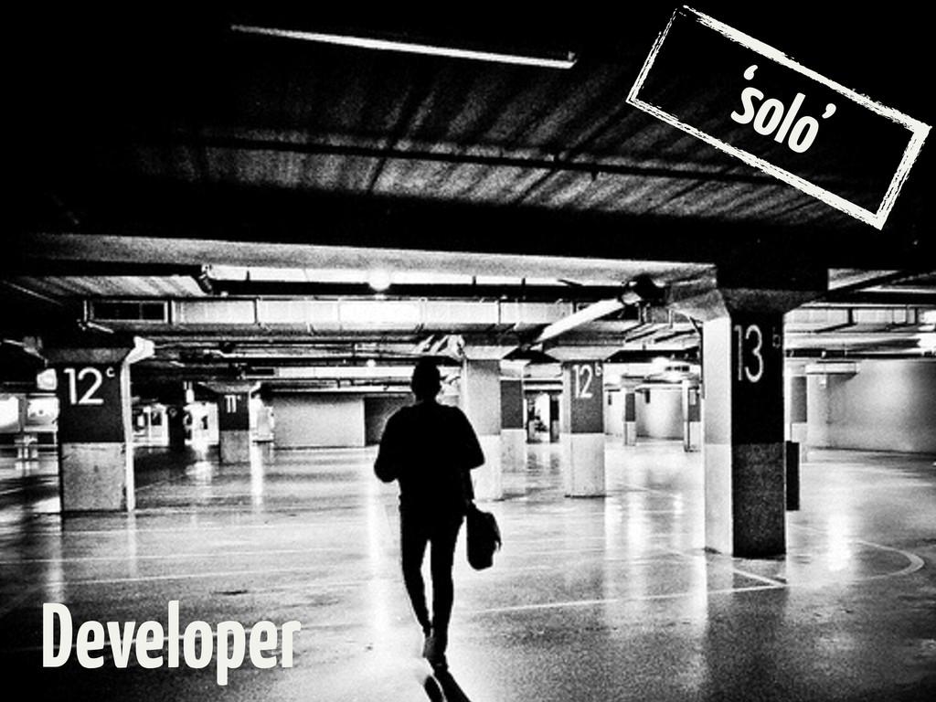 'solo' Developer