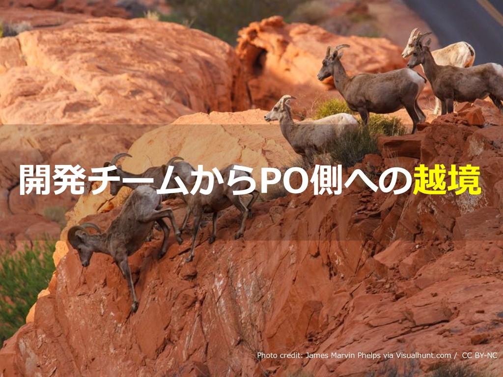 Toshihiro Ichitani All Rights Reserved. Photo c...