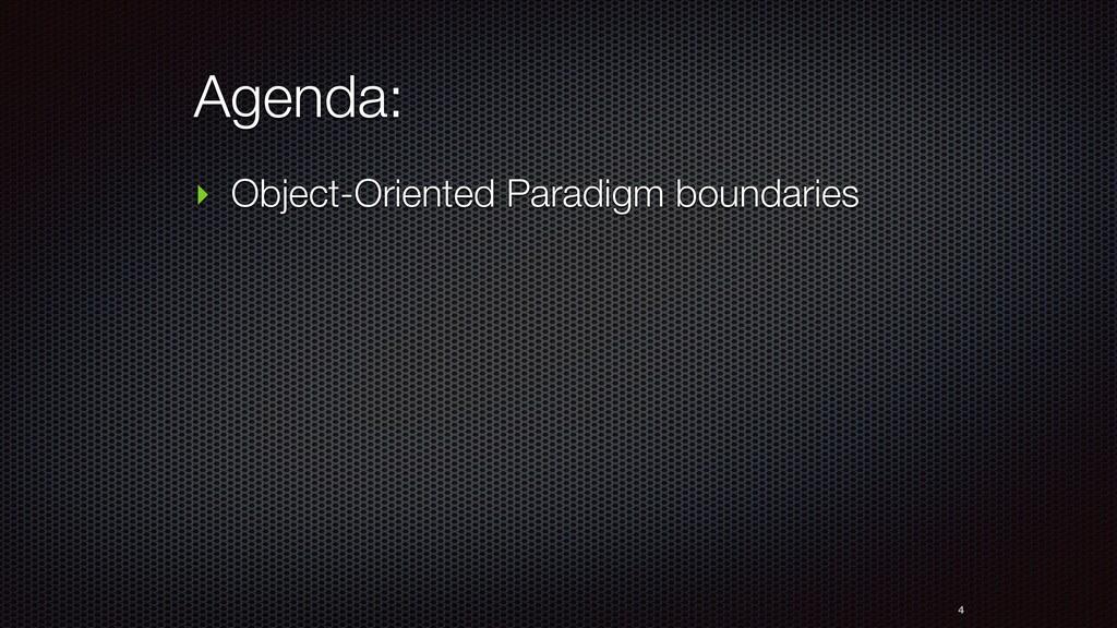 Agenda: ‣ Object-Oriented Paradigm boundaries 4
