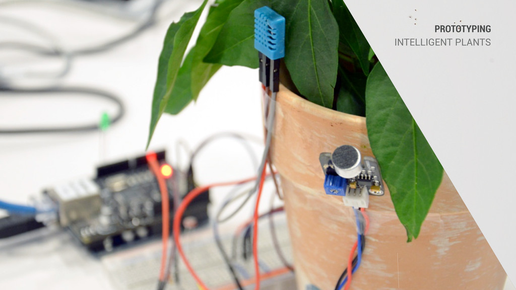 PROTOTYPING INTELLIGENT PLANTS