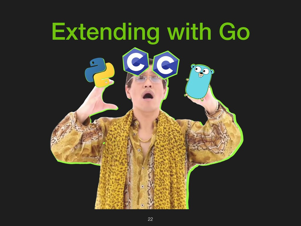 Extending with Go 22