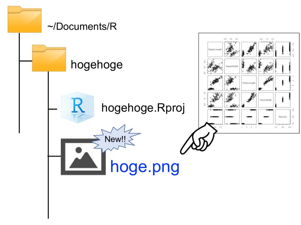 hogehoge ~/Documents/R hogehoge.Rproj hoge.png ...