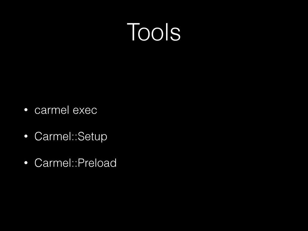 Tools • carmel exec • Carmel::Setup • Carmel::P...