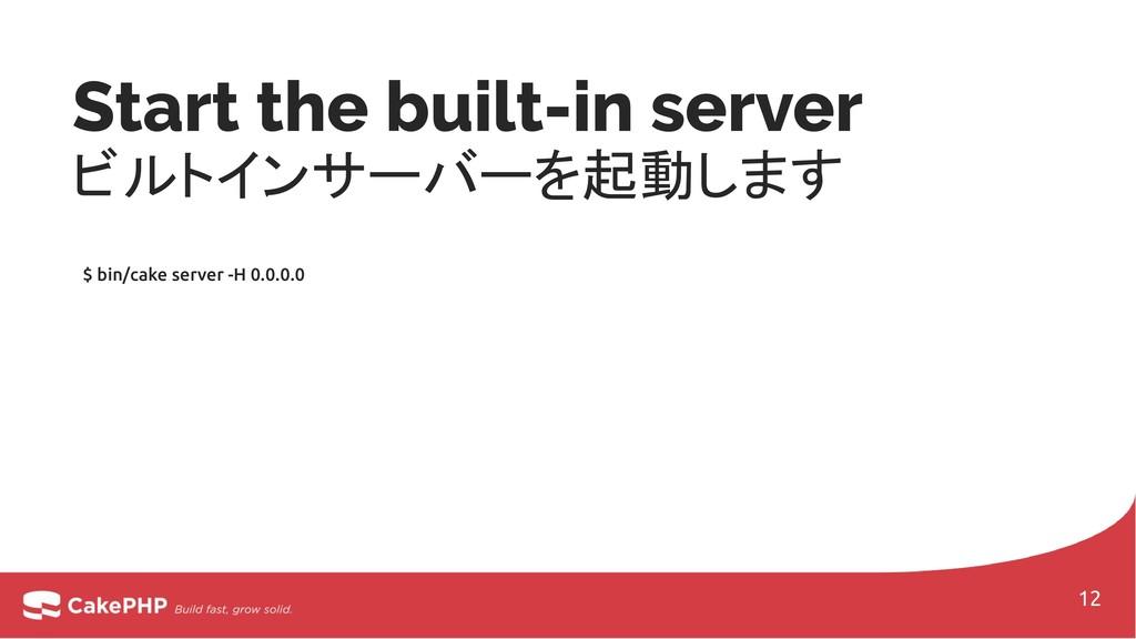 Start the built-in server ビルトインサーバーを起動します $ bin...