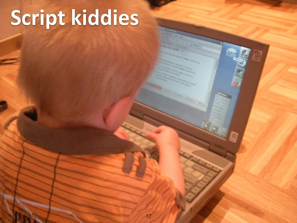 Script kiddies 12