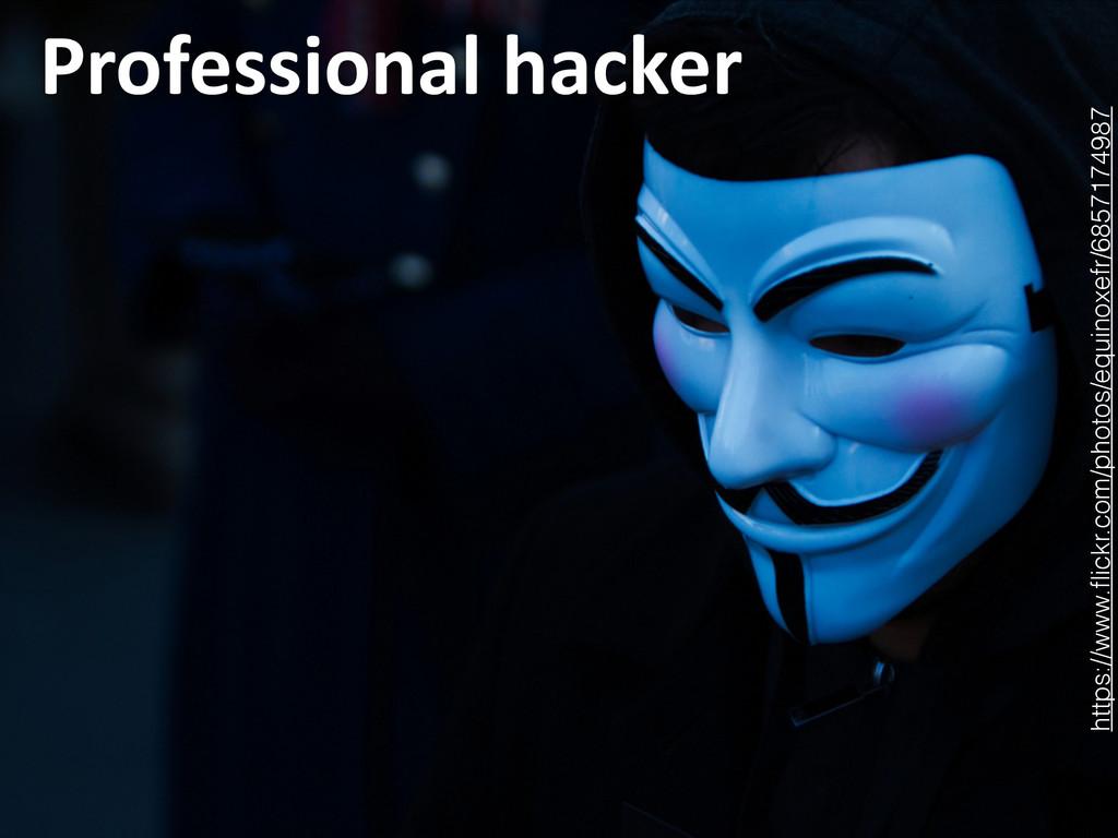 Professional hacker 14 https://www.flickr.com...