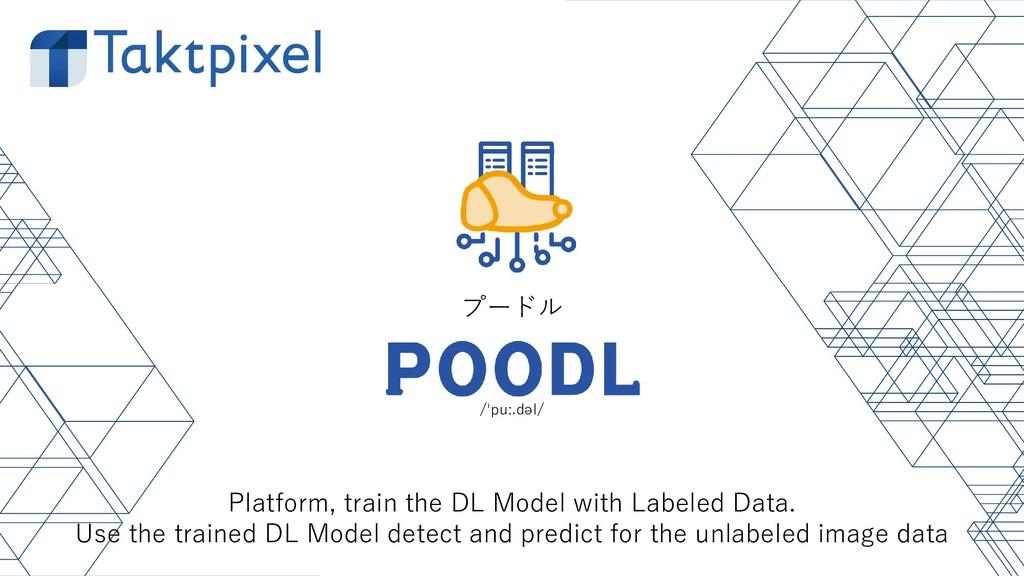 /ˈpuː.dəl/ プードル Platform, train the DL Model wi...