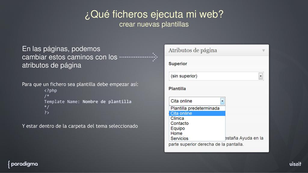 ¿Qué ficheros ejecuta mi web? crear nuevas plan...