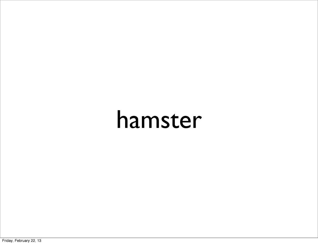 hamster Friday, February 22, 13