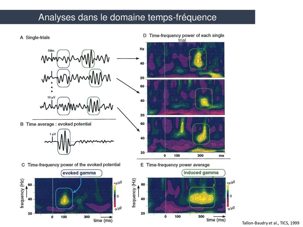 Tallon-Baudry et al., TICS, 1999 Analyses dans ...