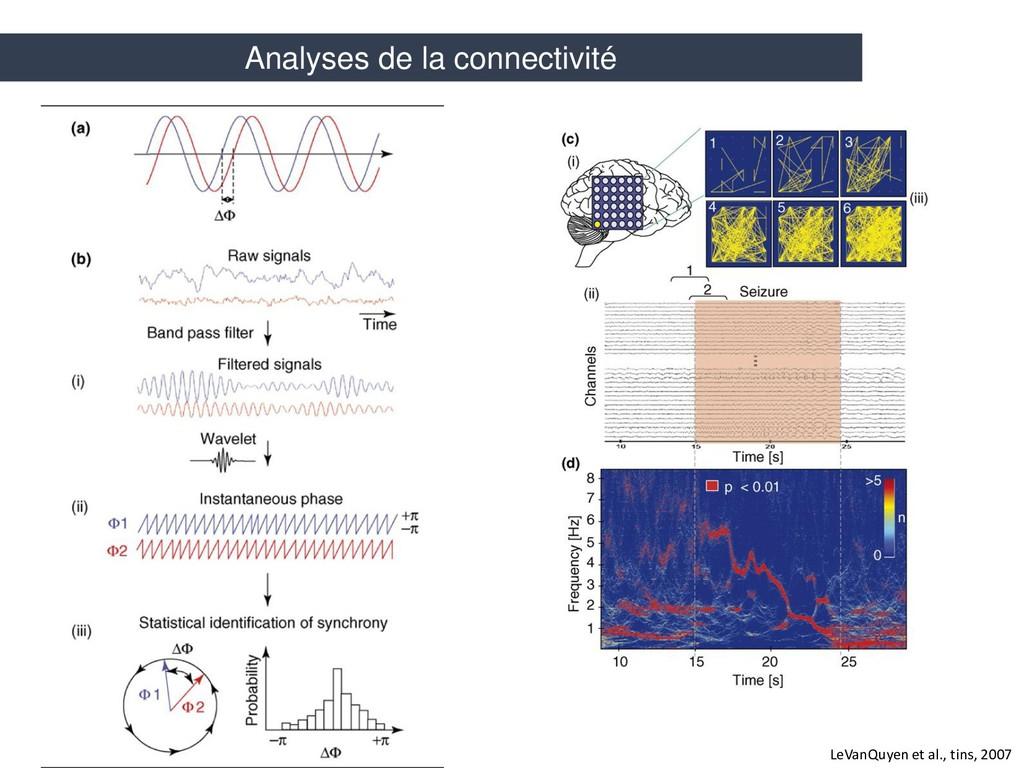 LeVanQuyen et al., tins, 2007 Analyses de la co...