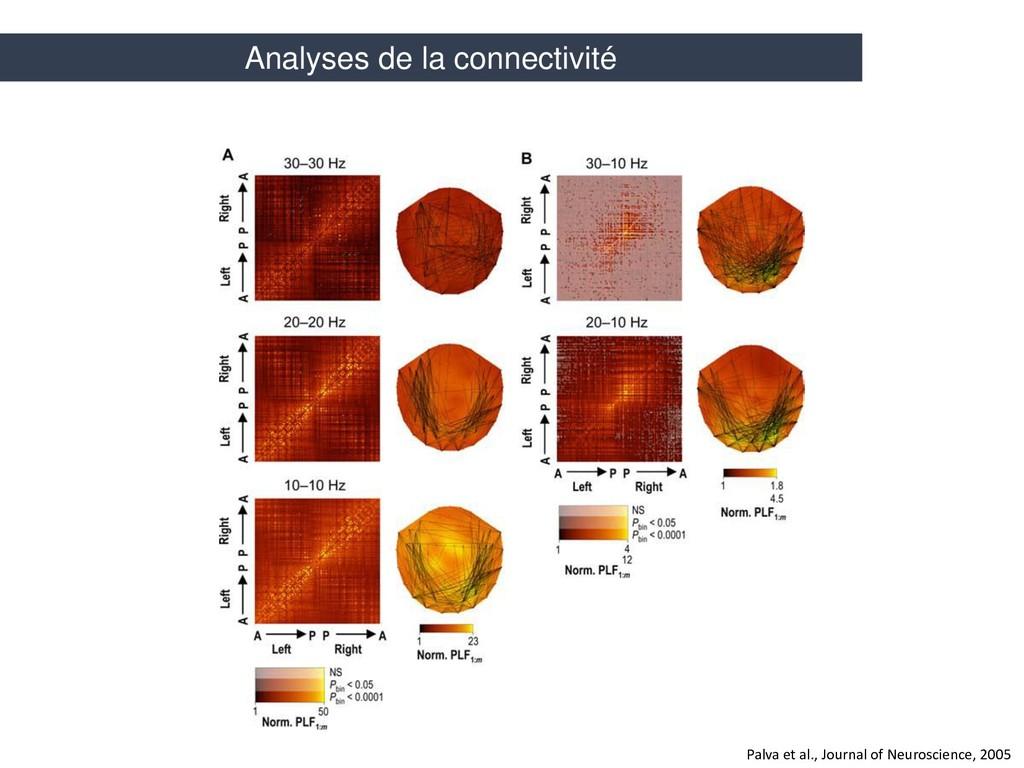 Palva et al., Journal of Neuroscience, 2005 Ana...