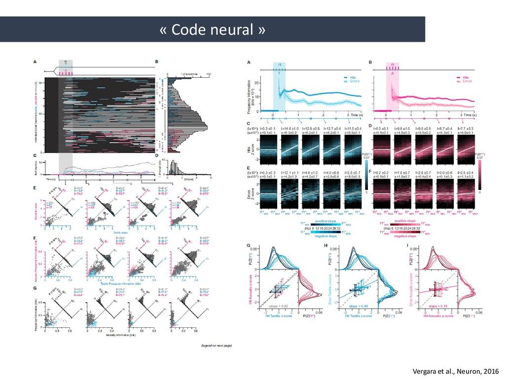 « Code neural » Vergara et al., Neuron, 2016