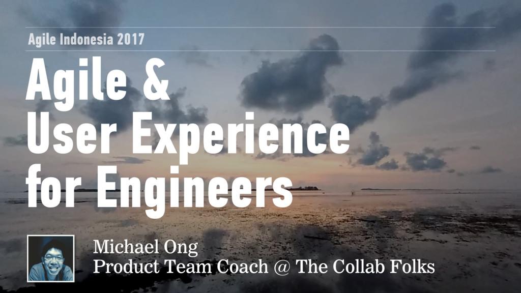 Agile &  User Experience for Engineers Agile I...
