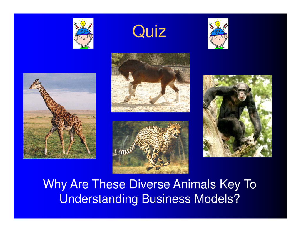 Quiz Why Are These Diverse Animals Key To Under...