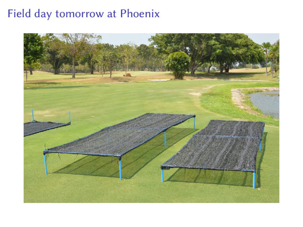 Field day tomorrow at Phoenix