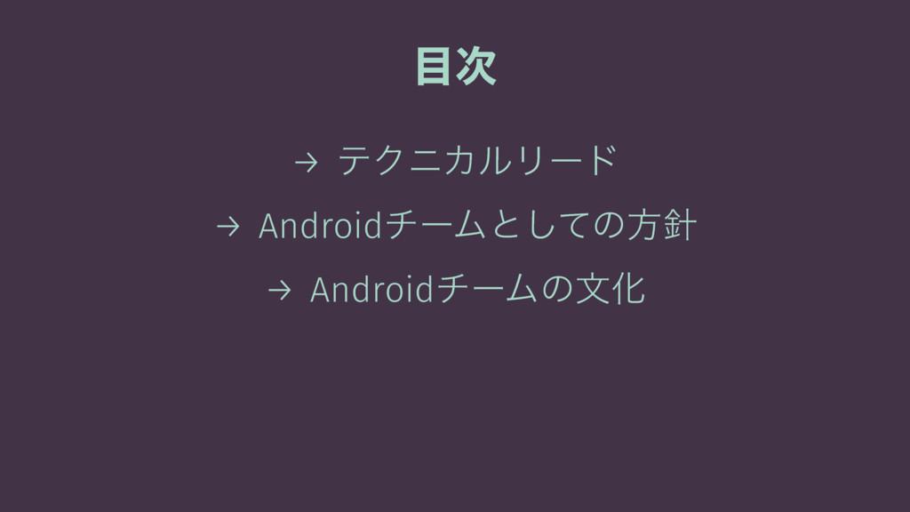  → ςΫχΧϧϦʔυ → AndroidνʔϜͱͯ͠ͷํ → AndroidνʔϜͷจԽ
