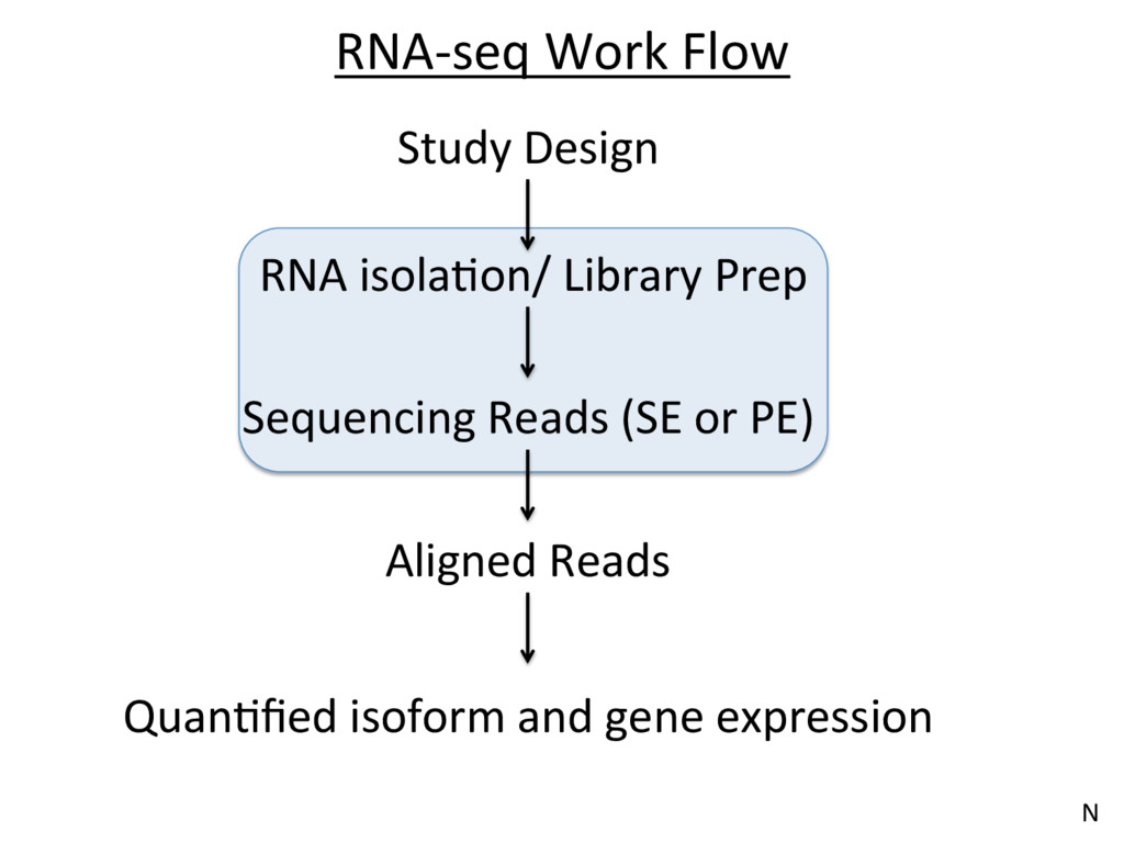 RNA-seq Work Flow Aligned Reads QuanJfied isofor...