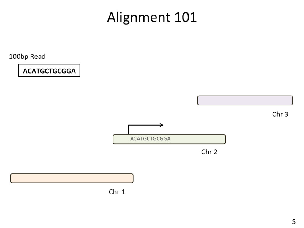 Alignment 101 ACATGCTGCGGA ACATGCTGCGGA 100bp R...