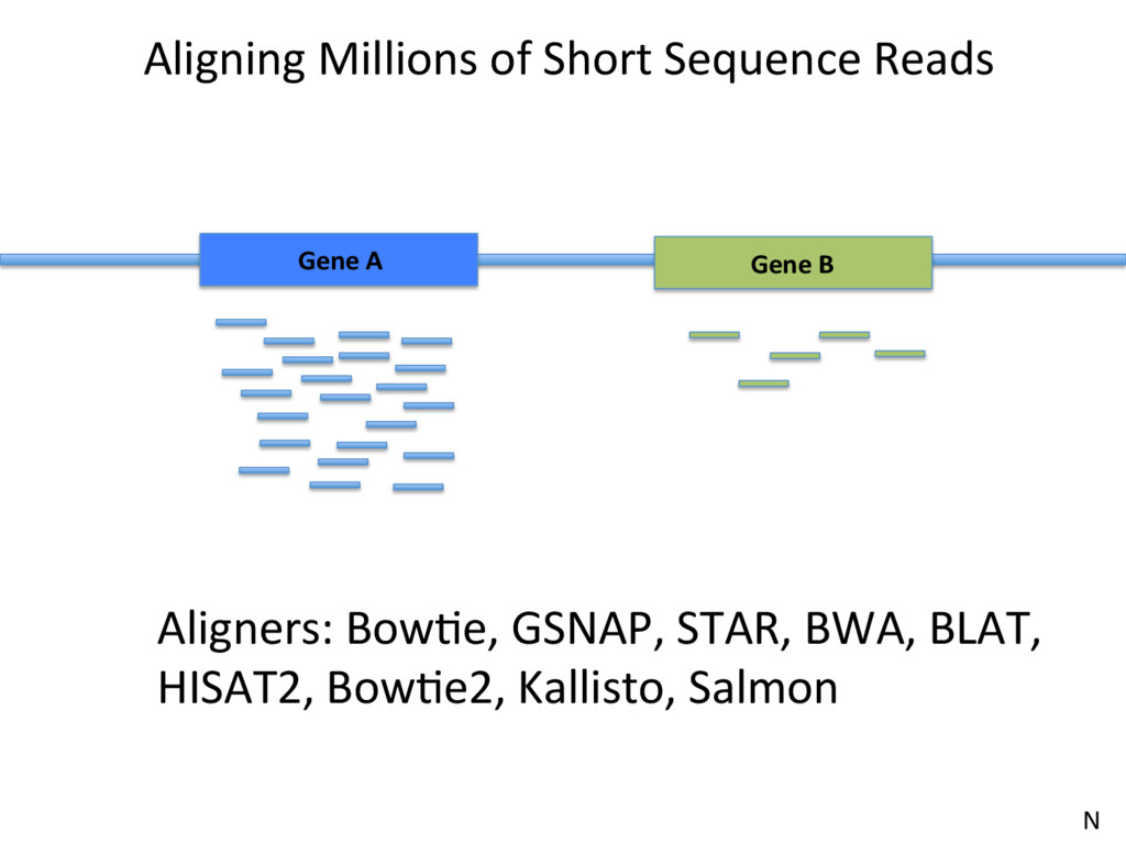 Aligning Millions of Short Sequence Reads Gene ...