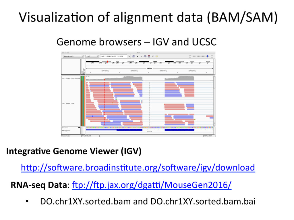 VisualizaJon of alignment data (BAM/SAM) Genome...