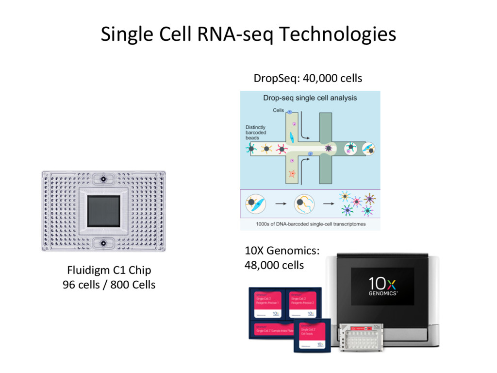 Single Cell RNA-seq Technologies Fluidigm C1 Ch...