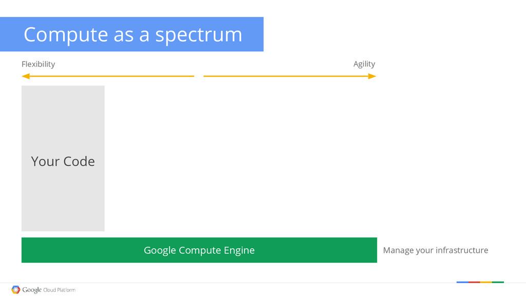 Flexibility Agility Google Compute Engine Compu...