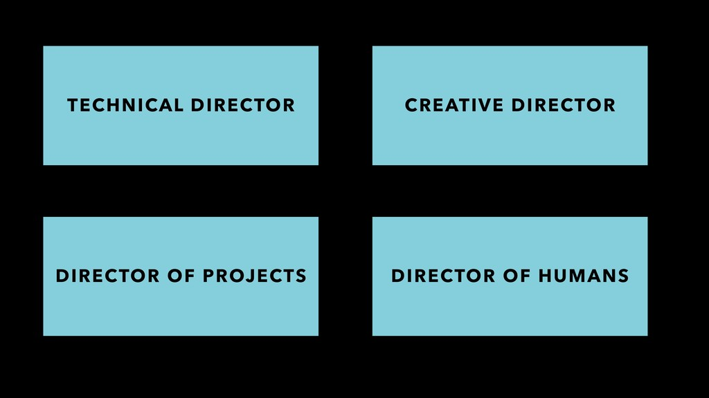 DIRECTOR OF PROJECTS DIRECTOR OF HUMANS TECHNIC...