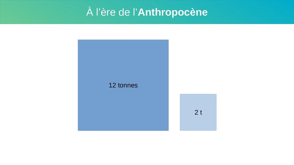 À l'ère de l'Anthropocène 12 tonnes 2 t