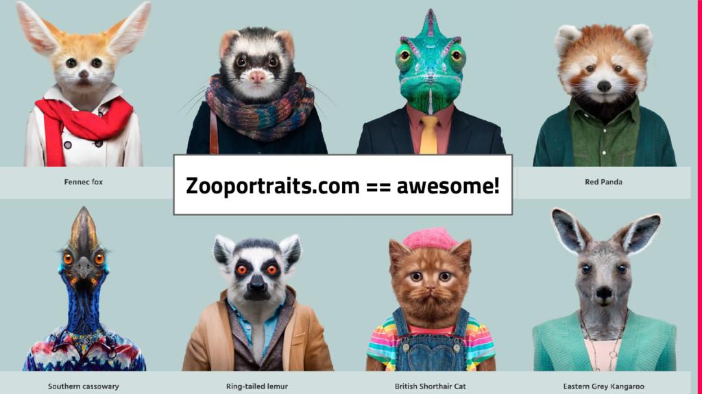 Zooportraits.com == awesome!