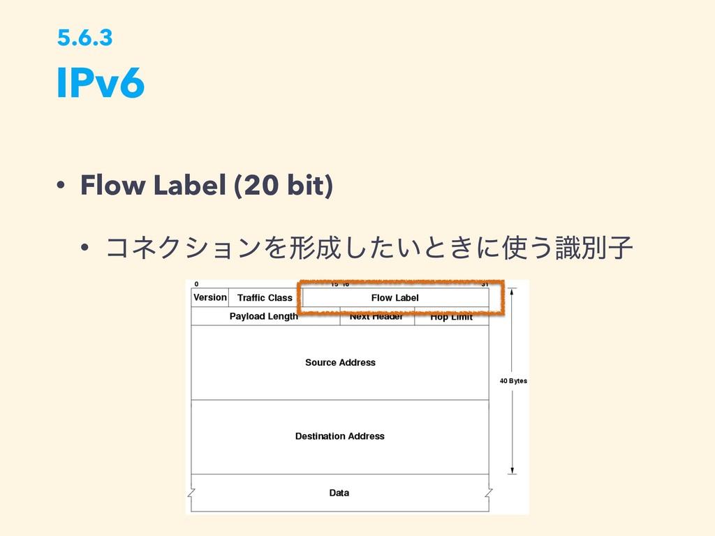 IPv6 5.6.3 • Flow Label (20 bit) • ίωΫγϣϯΛܗ͍ͨ͠...