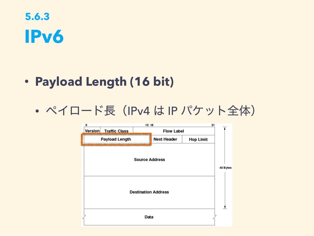 IPv6 5.6.3 • Payload Length (16 bit) • ϖΠϩʔυʢI...