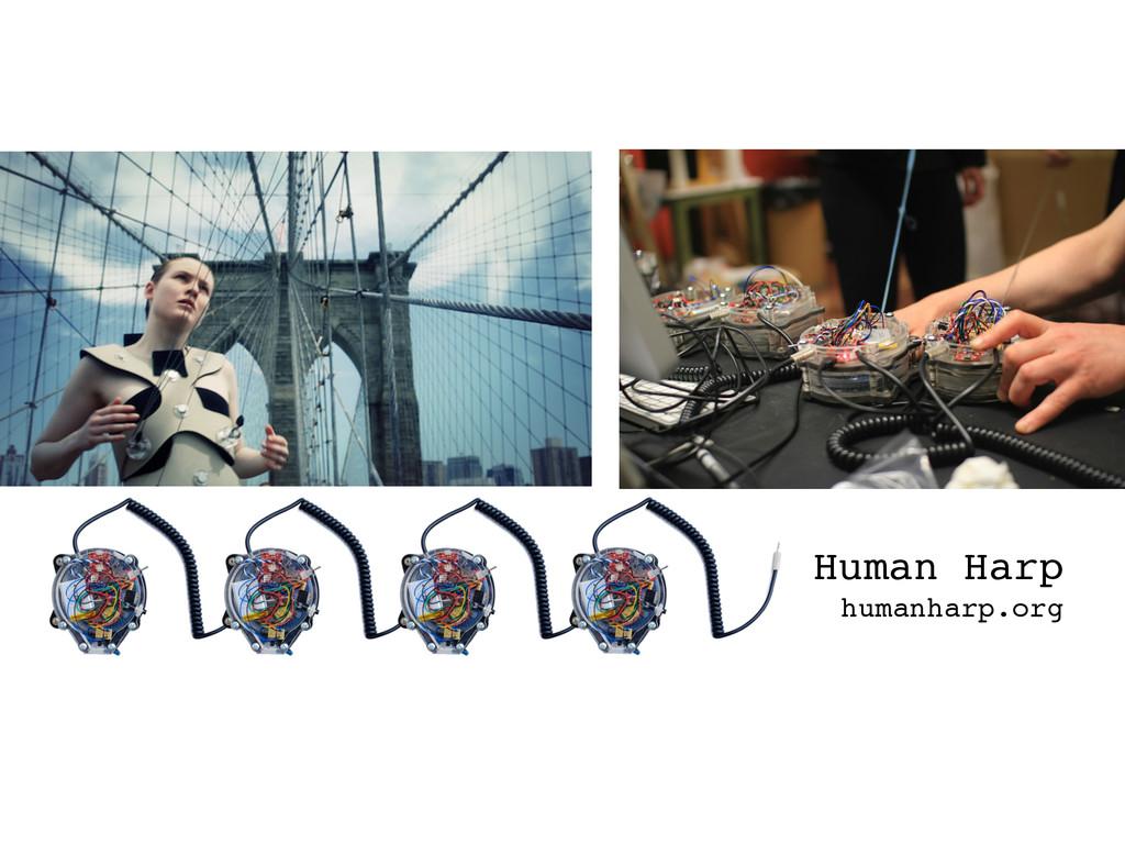Human Harp humanharp.org