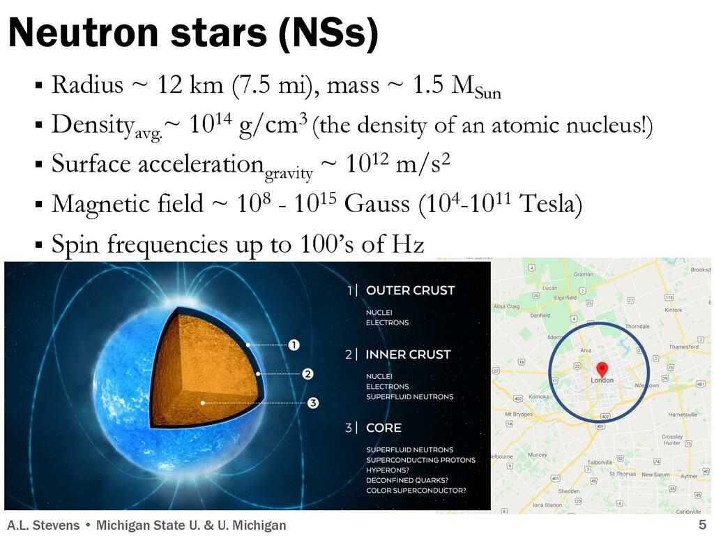 § Radius ~ 12 km (7.5 mi), mass ~ 1.5 MSun § De...
