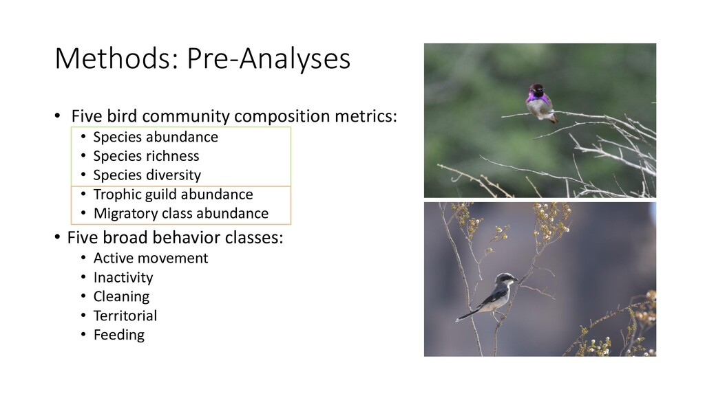 Methods: Pre-Analyses • Five bird community com...