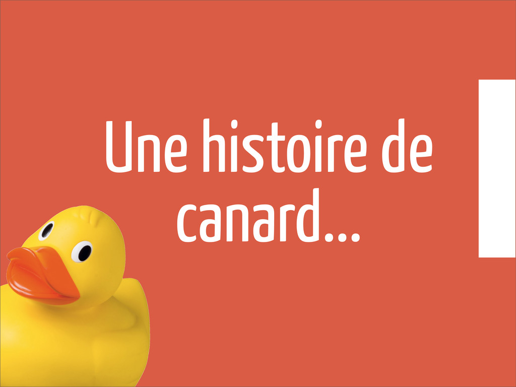 Une histoire de canard...
